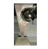 """Победитель в номинации """"Новинка года"""" на выставке FOOD&DRINKS 2012"""
